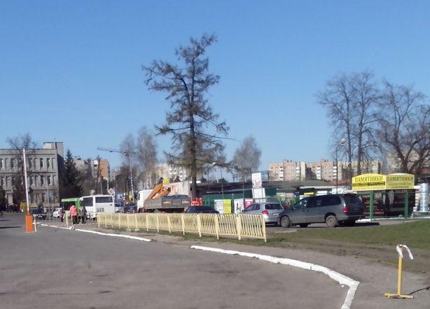 Фото: Татьяна НЕКРАШЕВИЧ