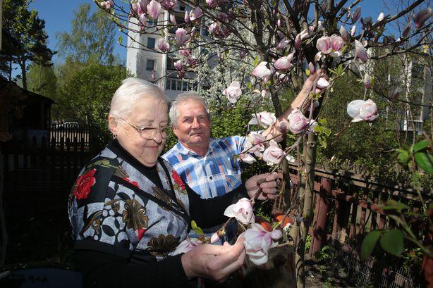 Супруги Дребезовы