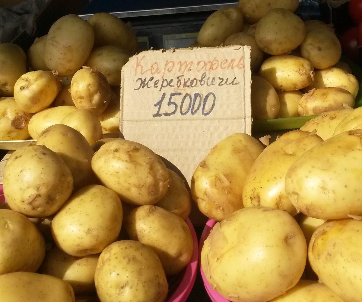 Картофель из Ляховичского района на Кооперативном рынке 19 июня продавали за 15 тысяч рублей.