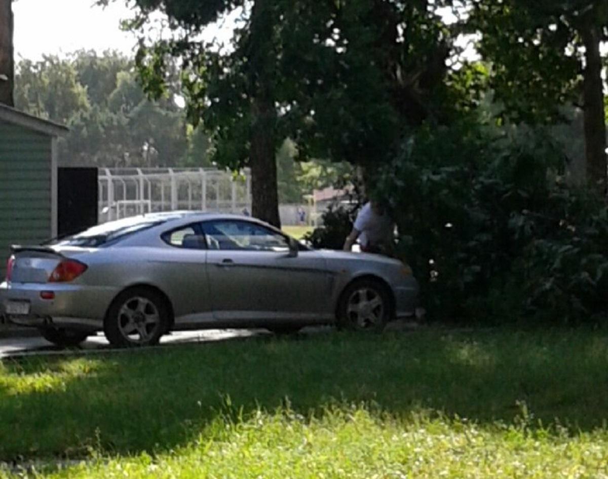 Хозяин автомобиля освобождает машину из-под веток упавшего дерева