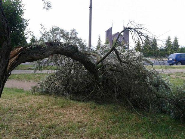 Последствия урагана на улице Энтузиастов, 23 июля. Фото: Анна КИЛАТ