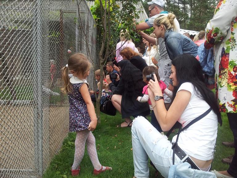 Гости с удовольствием фотографировались на фоне животных.Фото:Татьяна НЕКРАШЕВИЧ