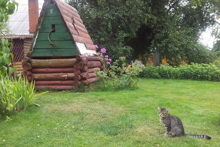 Агроусадьба в Деколах. Дворик.Фото:Татьяна НЕКРАШЕВИЧ