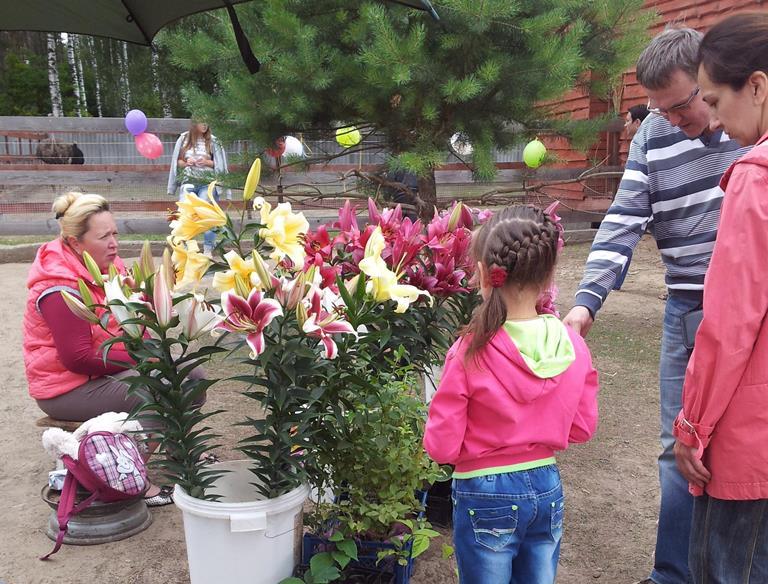 Желающие могли купить лилии и другие садовые растения. Фото:Татьяна НЕКРАШЕВИЧ