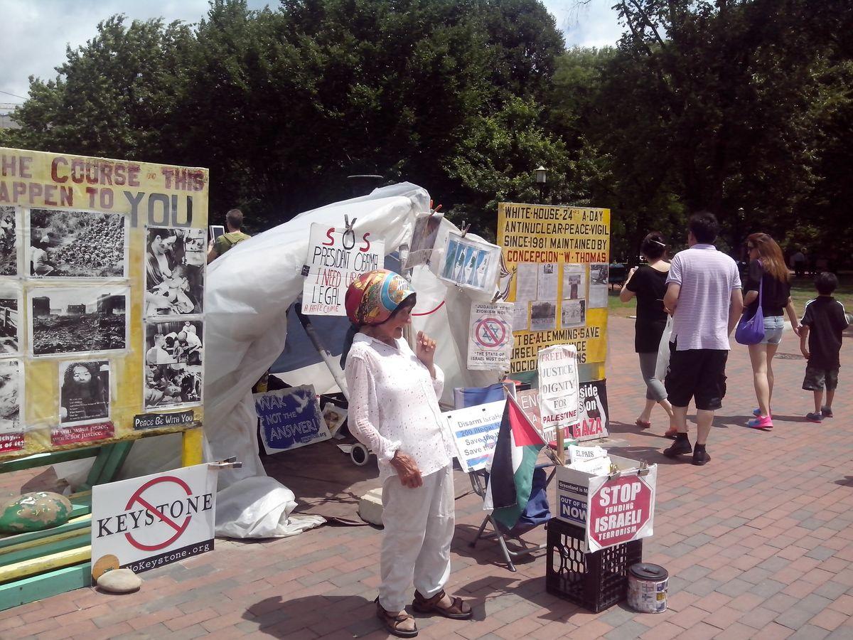 Одиночный пикет Конни против насилия и войны напротив Белого дома