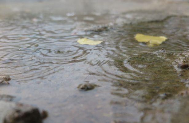 Осенний дождь. Фото: Наталья СЕМЕНОВИЧ