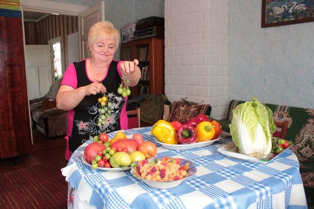 Алина Булыга демонстрирует сорта помидоров. Фото: Юрий ПИВОВАРЧИК.