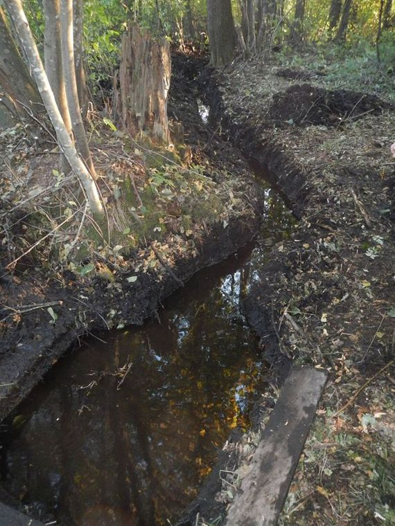 Студенты очистили родник от земли и растительного мусора. Фото: архив Владимира Зуева.