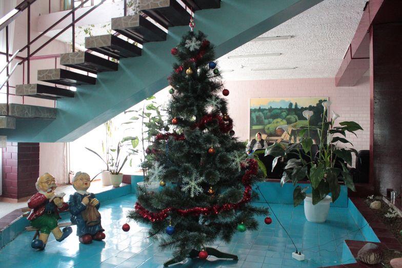 В фойе интерната уже стоят новогодние ели. Фото: Юрий ПИВОВАРЧИК
