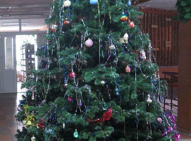 Новогодняя елка в фойе. Фото: Татьяна НЕКРАШЕВИЧ.