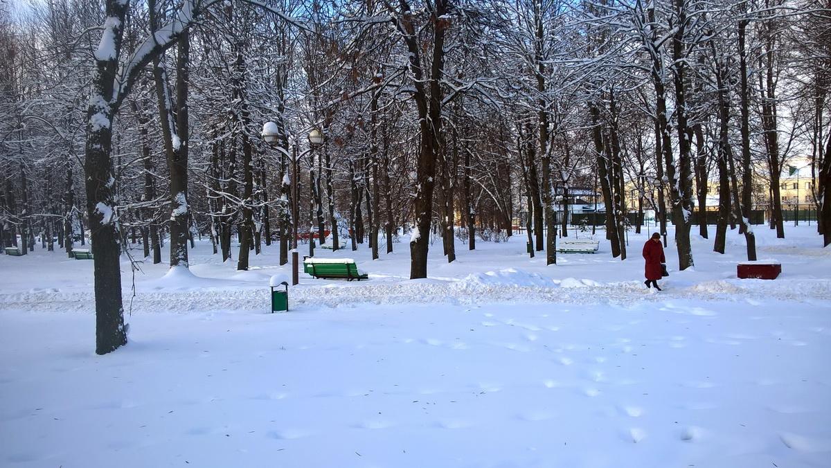 Молодой парк. Фото: Руслан РЕВЯКО