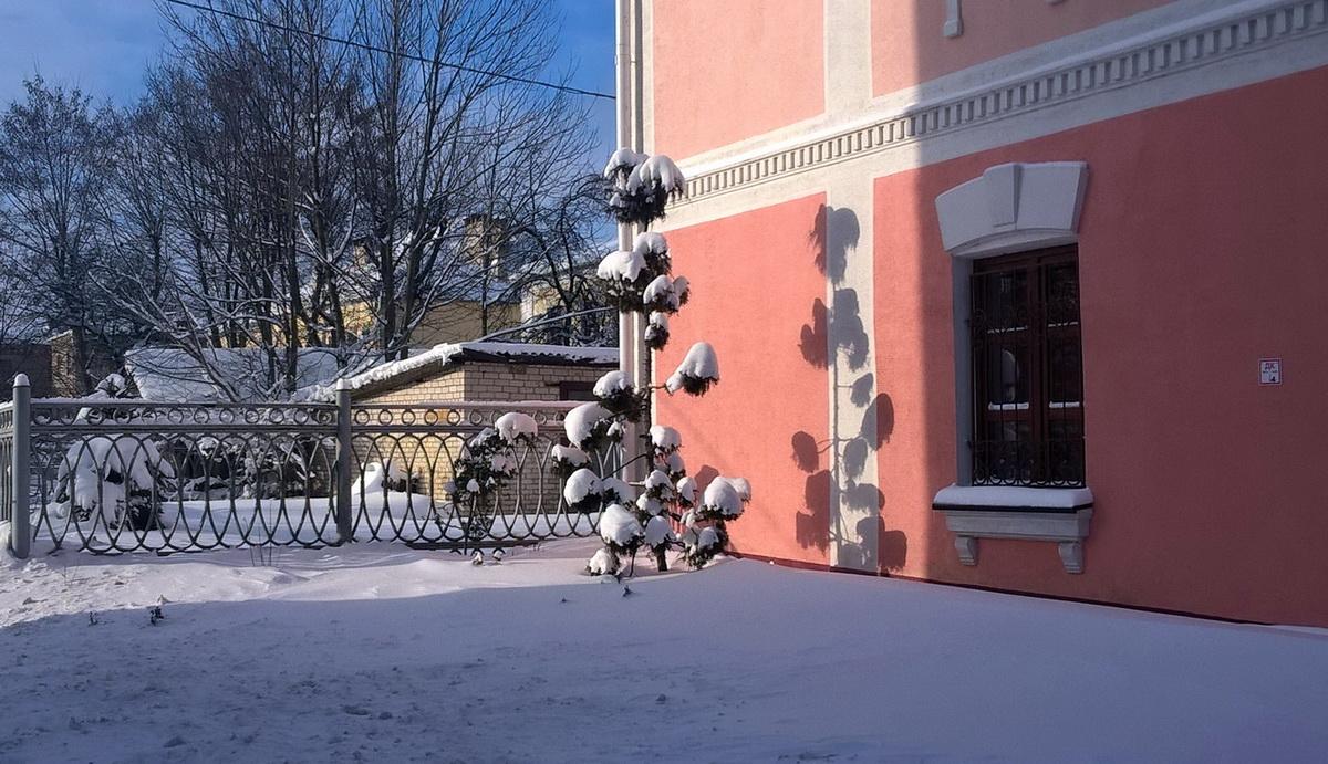 Около здания музея