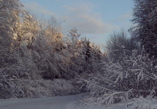 В Барановичах в ближайшие дня усилятся морозы. Фото: Наталья СЕМЕНОВИЧ