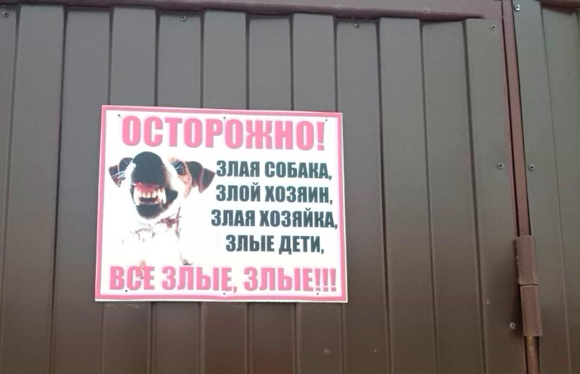 Фото: Наталья СЕМЕНОВИЧ