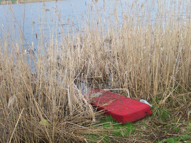 В камышах можно найти старый диван. Фото: Татьяна НЕКРАШЕВИЧ.