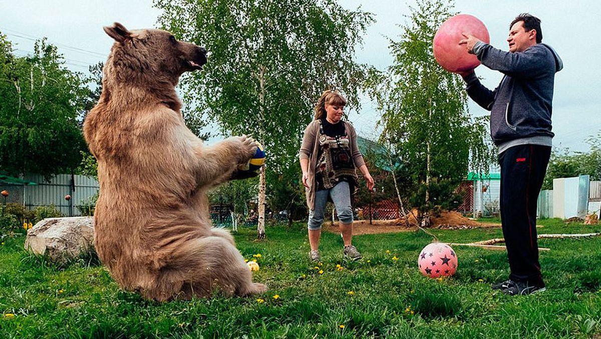 Мишке нравится играть с мячом