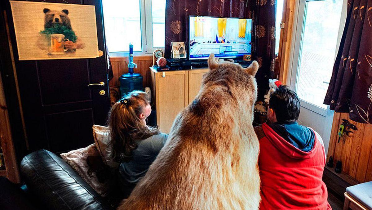 Степа любит смотреть телевизор