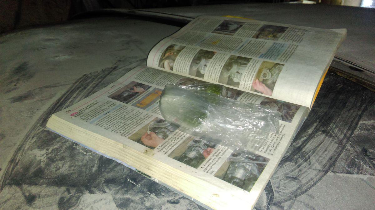 Житель Барановичей выращивал коноплю в гараже. Фото: предоставлено Барановичским ГОВД