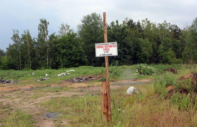 Полигон в д. Локтыши, где закапывают свиней. Фото: ganc-chas.by