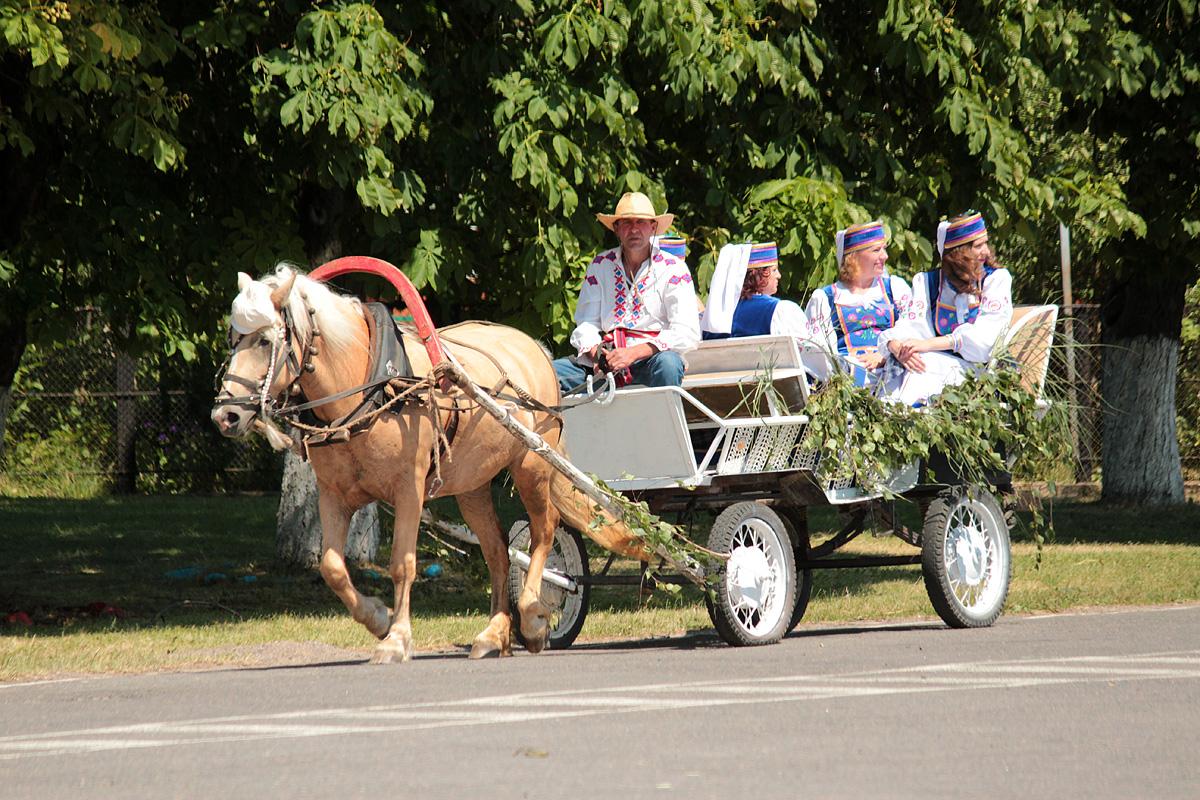 Желающие могли прокатиться по улицам агрогородка в бричке. Фото: Юрий ПИВОВАРЧИК