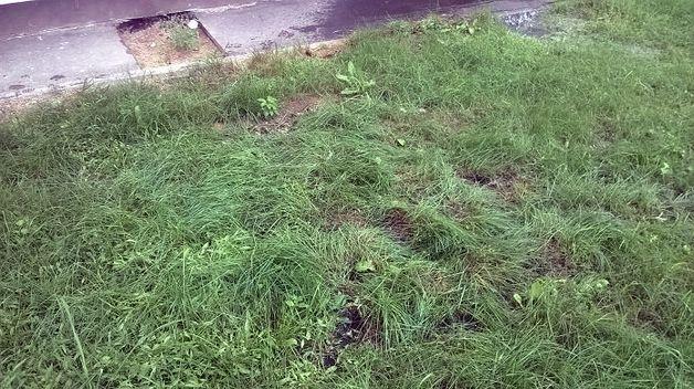 СК: 7июля вВитебской области двое маленьких детей упали сбалконов