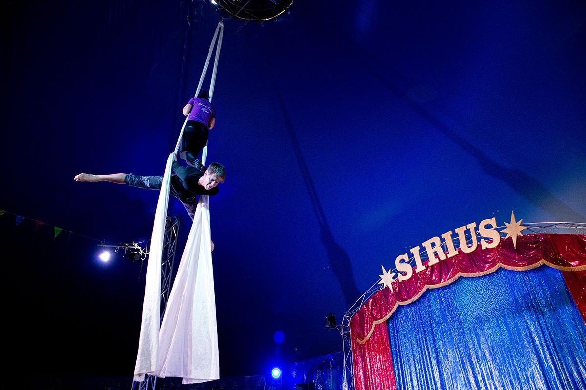 Гимнасты под куполом цирка