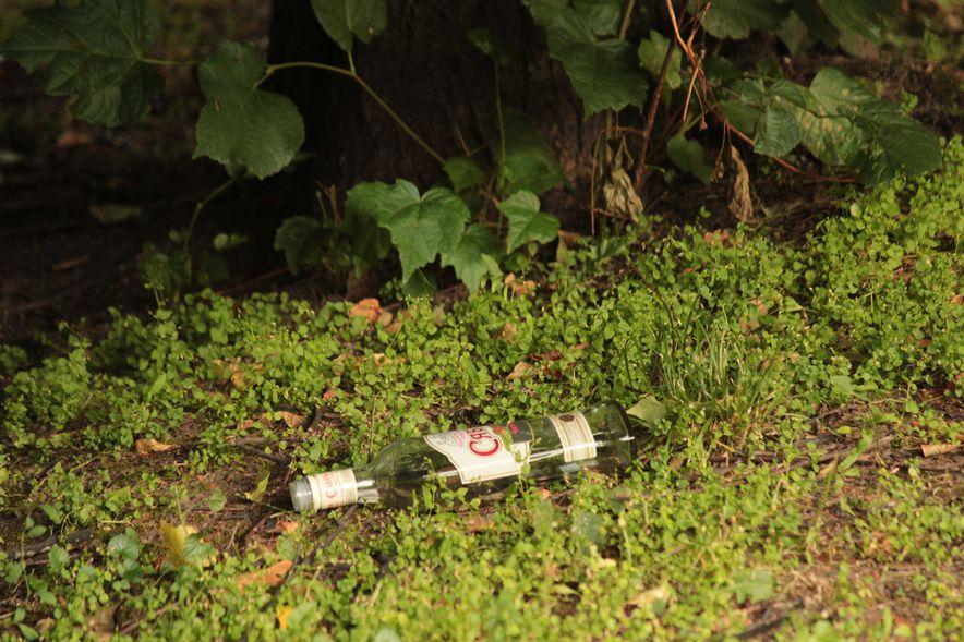 Бутылки, разбросанные в траве. Фото : Юрий ПИВОВАРЧИК