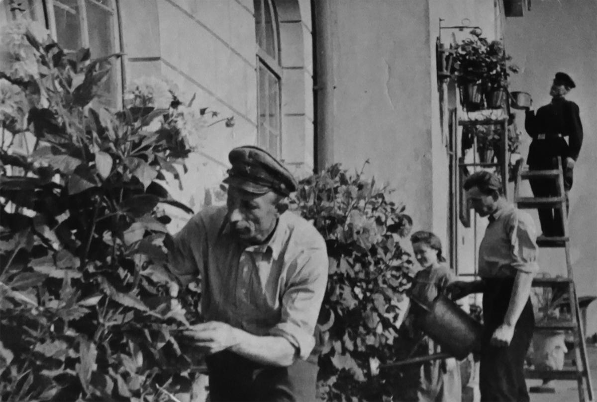 Мастер по озеленению Бронислав Галуза украшает цветами фасад здания вокзала «Барановичи-Полесские».Фото: архив семьи ГАЛУЗА