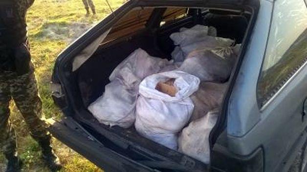 ИзУкраины вБеларусь снова пытались ввезти тонну сала
