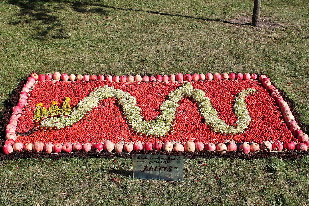Мозаичные панно из цветов, ягод и фруктов. Шяуляй. Фото: сайт snaujienos.lt