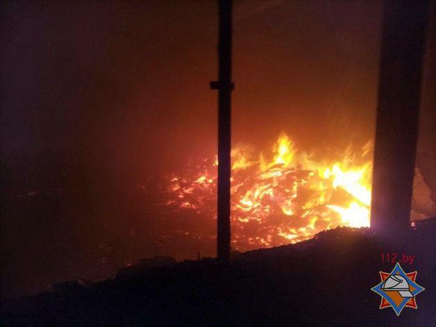МЧС назвало вероятную причину пожара назаводе вБарановичах