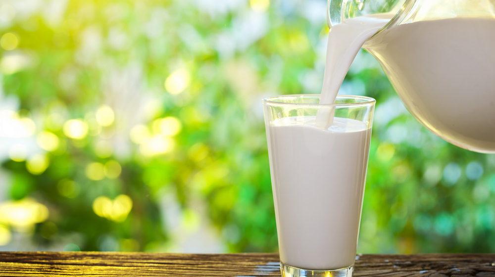 Российская сторона обвинила в жадности белорусских поставщиков молока