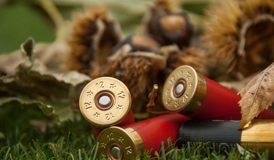 В Барановичском районе охотник с мотоцикла застрелил собаку на глазах хозяев-пенсионеров