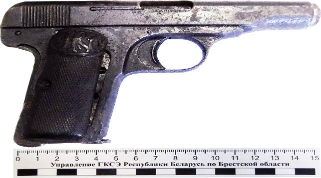 В Каменецком районе у местного жителя изъяли оружие конца XIX века
