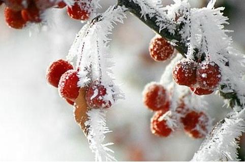 Мороз отступит. Метеорологи рассказали о погоде в Барановичах в среду, 27 ноября