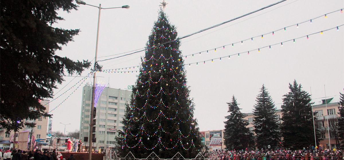 В Барановичах зажгли огни на главной елке города