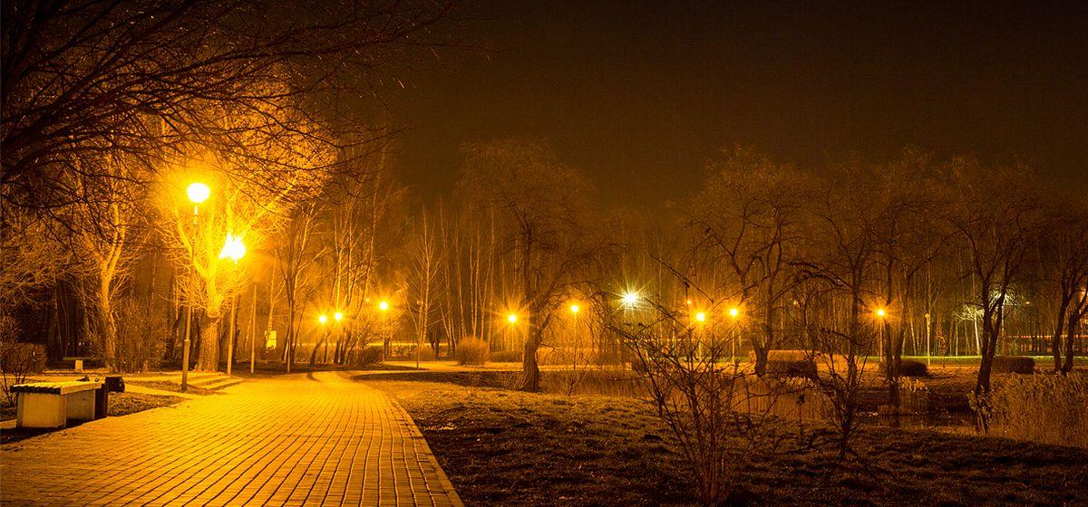 Выключить свет на «Час Земли» призывают жителей Барановичей