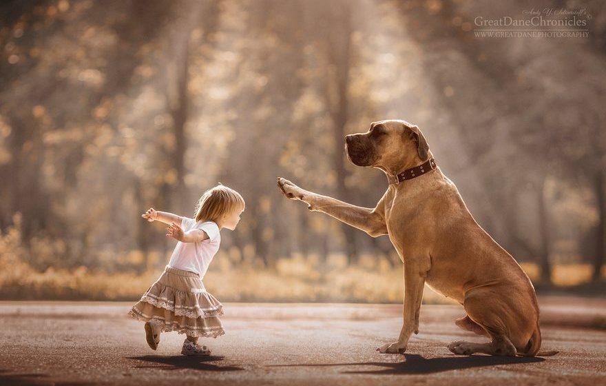 Фотопроект, который никого не оставит равнодушным: маленькие дети и их большие собаки