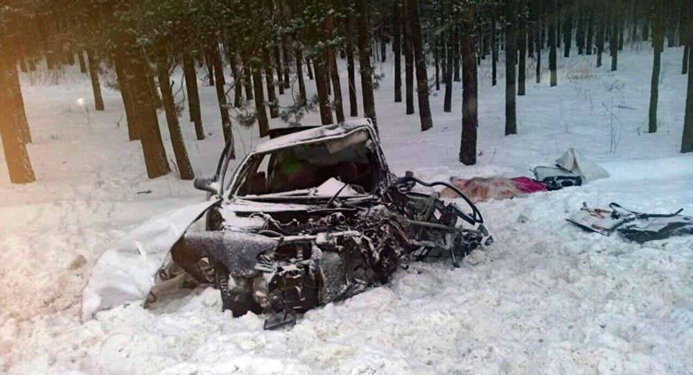 Пассажирка захотела в туалет, и это привело к гибели троих человек в ДТП в Речицком районе