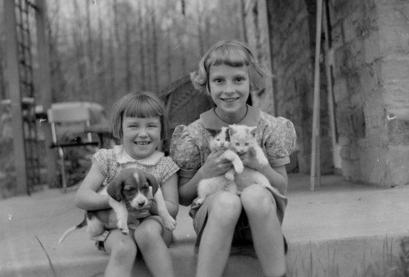 Ученые выяснили, что наличие домашних животных в семье положительно влияет на развитие ребенка