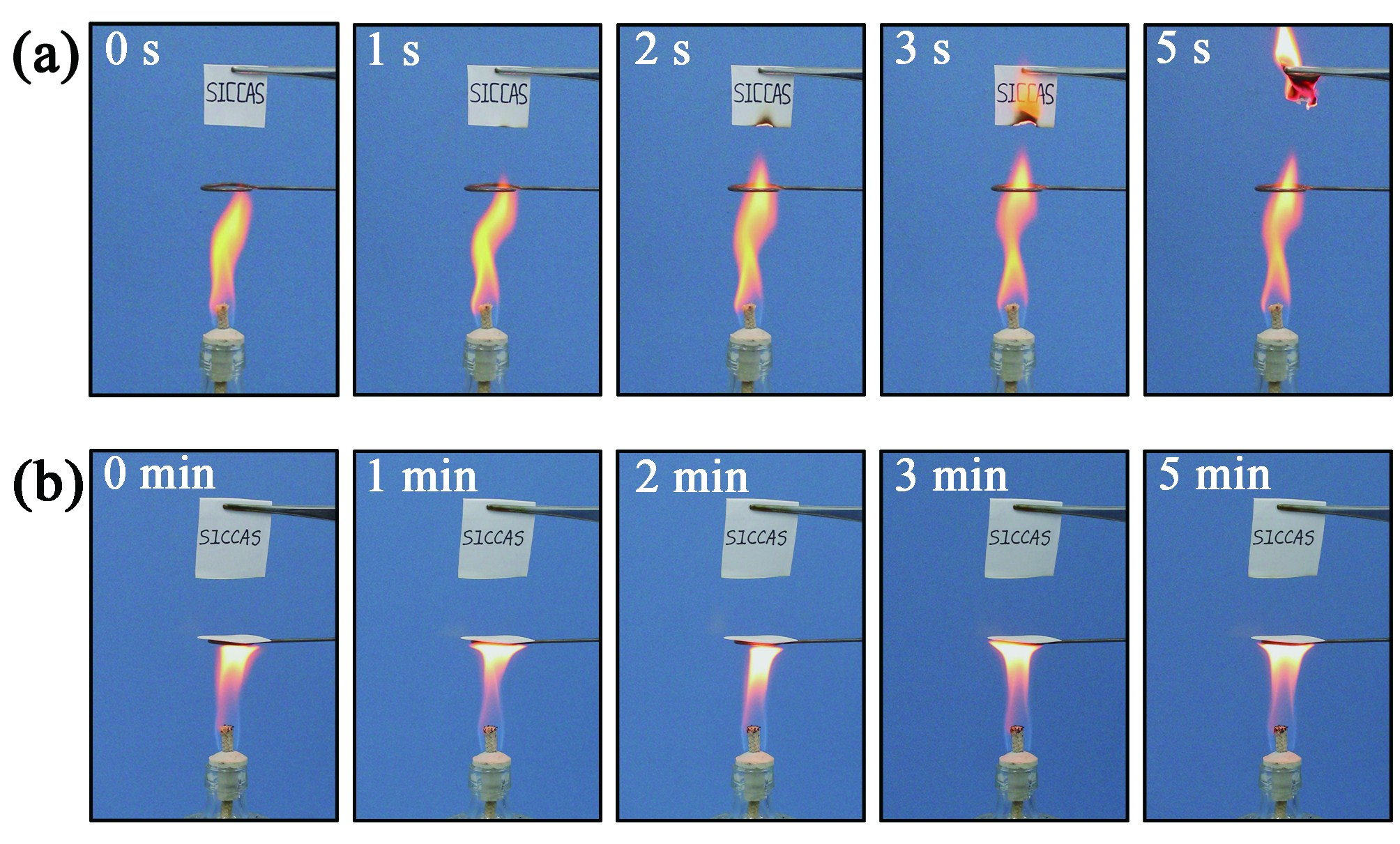 Китайские ученые создали устойчивую когню иводе бумагу