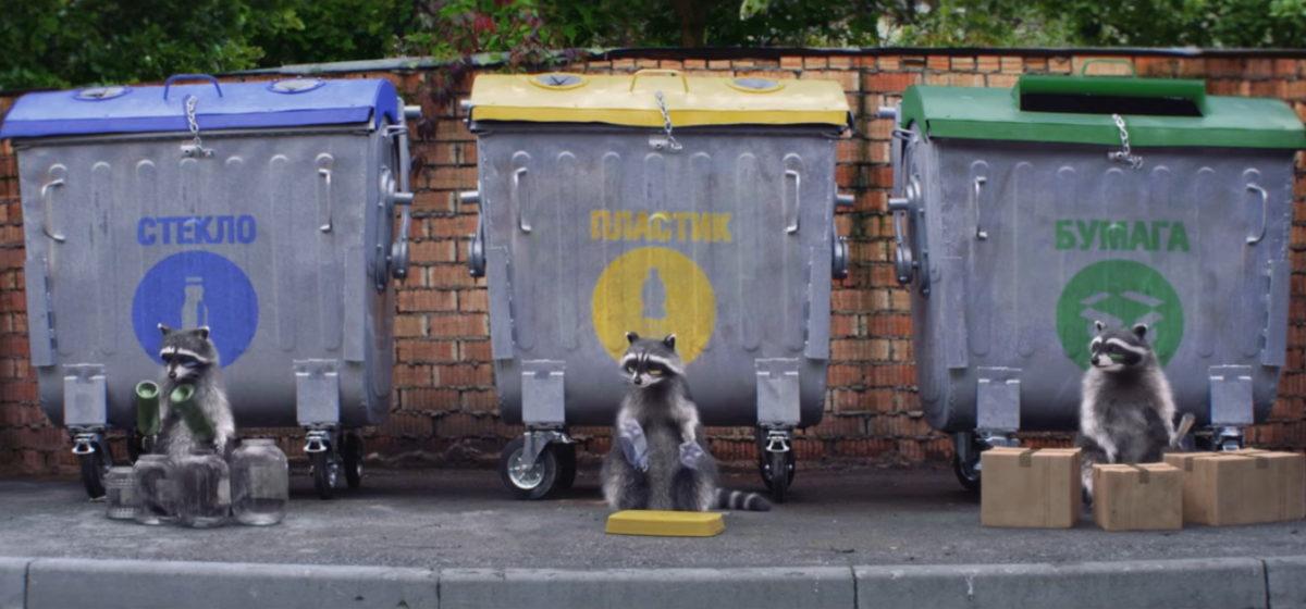 Белорусы сняли смешное видео, на котором еноты сортируют отходы по контейнерам