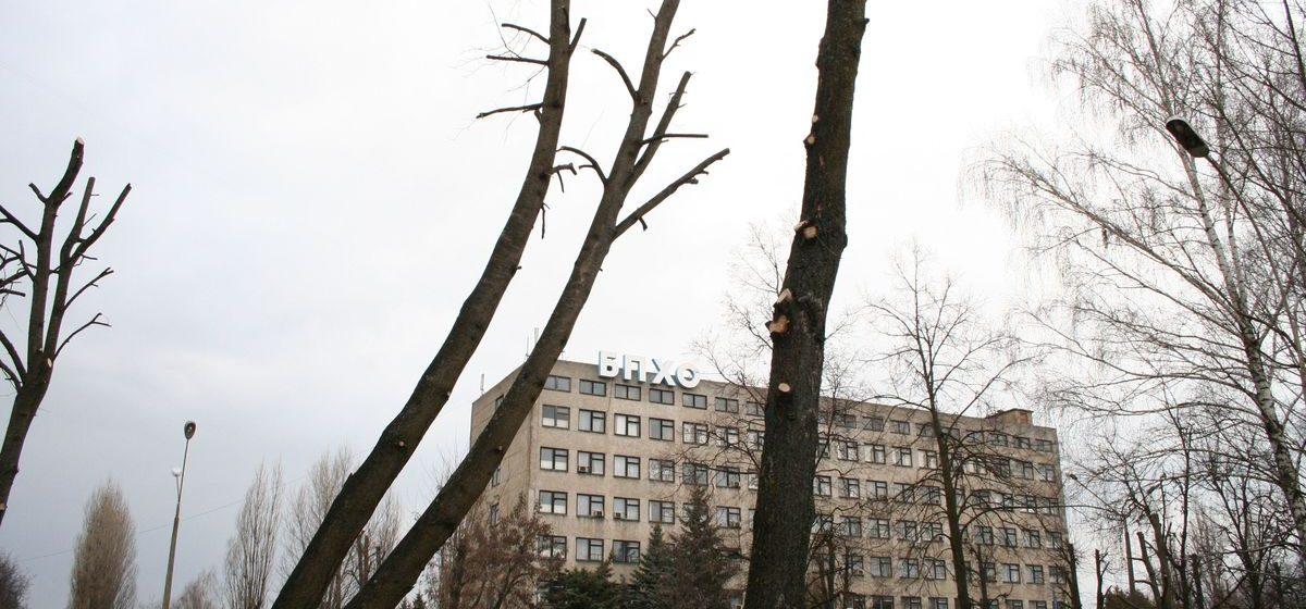 Лучшими товарами Беларуси признаны барановичские двери и хлопчатобумажные ткани