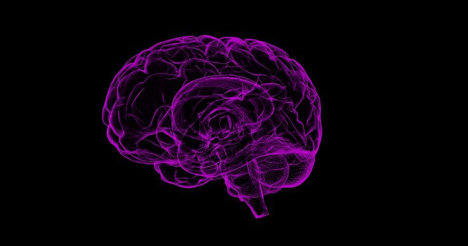 Ученые нашли средство, позволяющее избежать болезни Альцгеймера