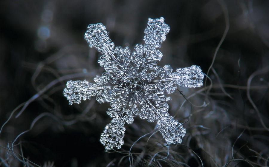 Фотограф из России делает удивительные снимки снежинок крупным планом