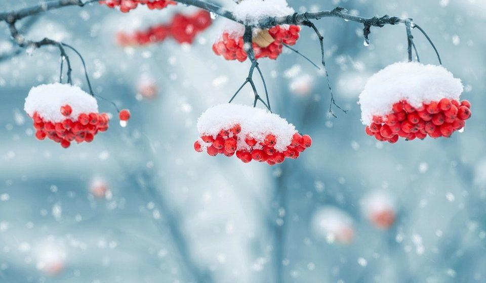 В Барановичах 10–12 января потеплеет