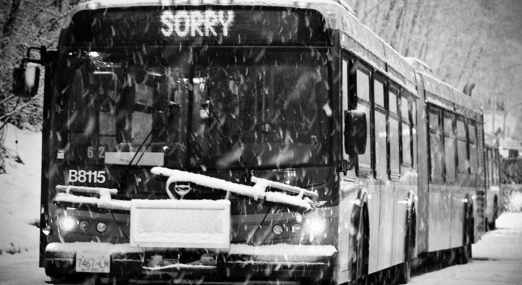 В Брестской области в снежных заносах застряли три рейсовых автобуса