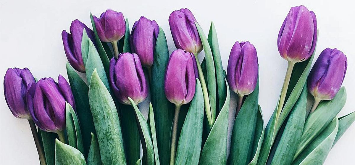 Барановичи в Instagram. Лучшие фото за 11 – 18 февраля