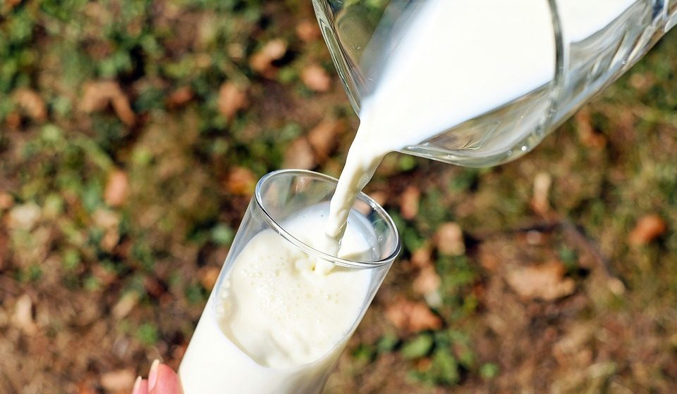 Минсельхоз РФ:  Беларусь – главный экспортер молока на наш рынок