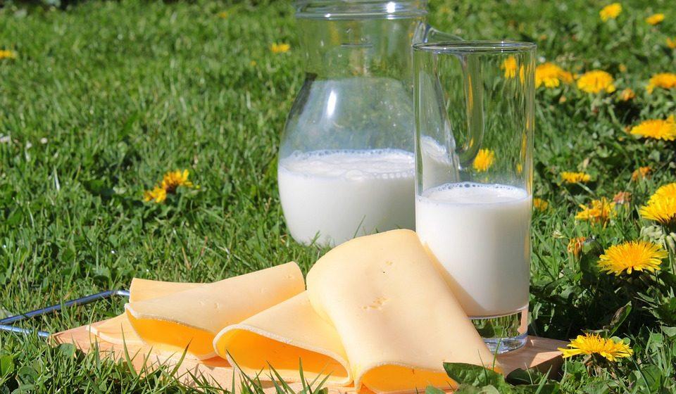 Барановичский молочный комбинат вошел в реестр крупнейших предприятий страны по закупке и переработке молока